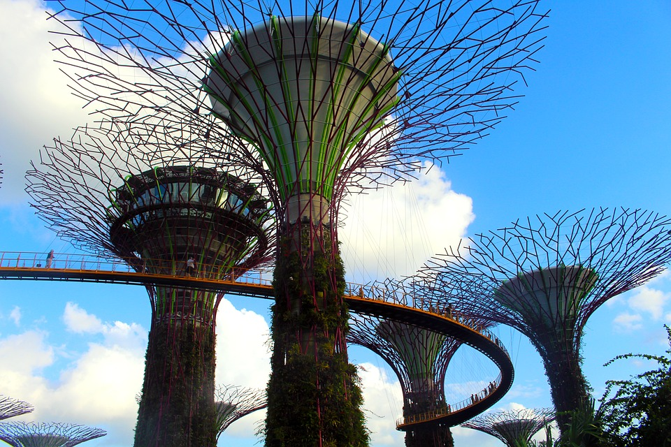 Top 5 Attractions you must visit in Singapore